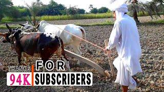 Jatt Movies | Trailer | Pakistani Village Life Channel