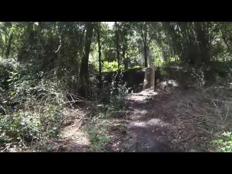 Mountain Bike Trail (Tillie K. Fowler Park Jacksonville, FL)