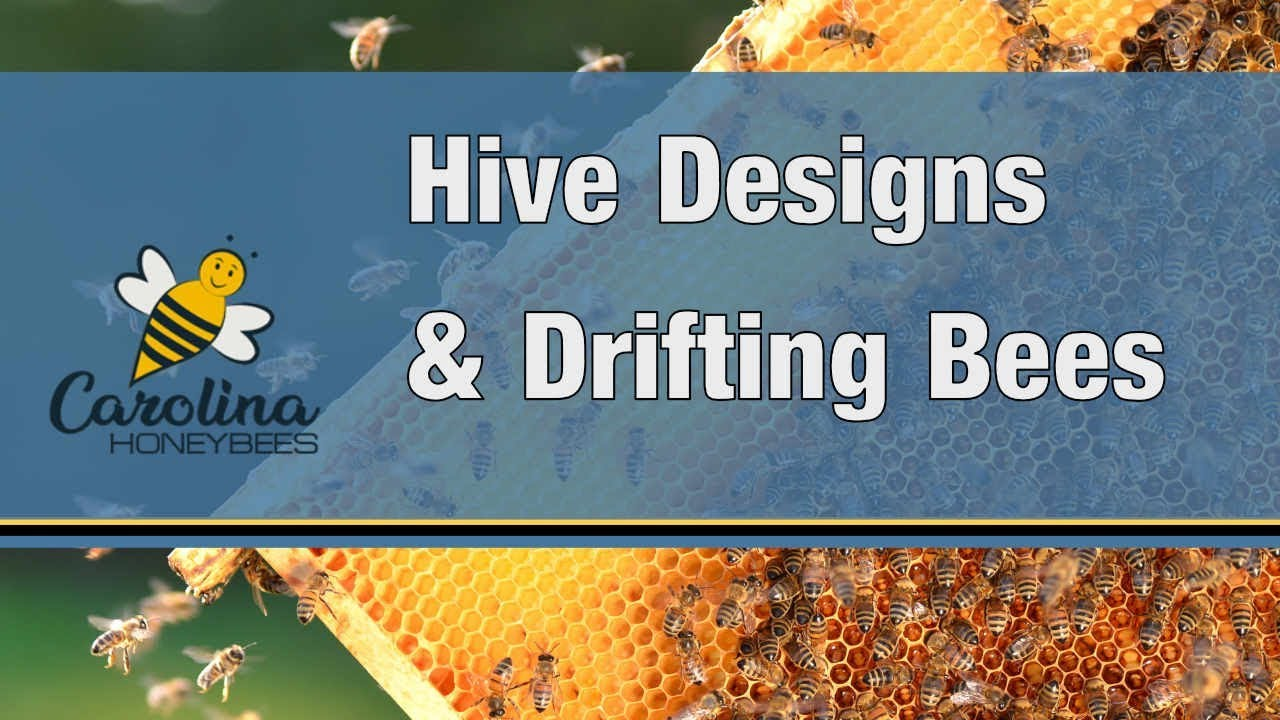 Why You May Want to Paint Designs on Your Beehive ! - Reducing Drifting
