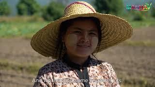 MASHAV Myanmar Promotional Video