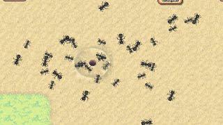 Колония муравьёв #2.Великая армия муравьёв!!