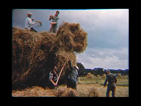 The Films of Ernest Kleinberg:  Belgium, Where the Past Meets the Present