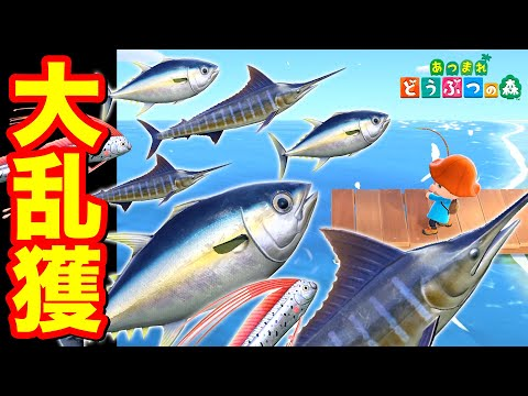 釣れ ない あつ 森 カジキ 【あつ森ブログ】人生初のどうぶつの森で釣りに挑戦!1時間で爆釣!羨ましい…
