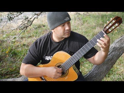 Study in E minor | Francisco Tarrega | Classical Guitar Lesson | NBN Guitar
