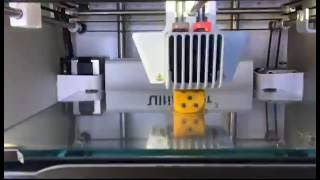 3D Printing #4 - Ultimaker 3 Dual Extrusion | Testprint | Dice