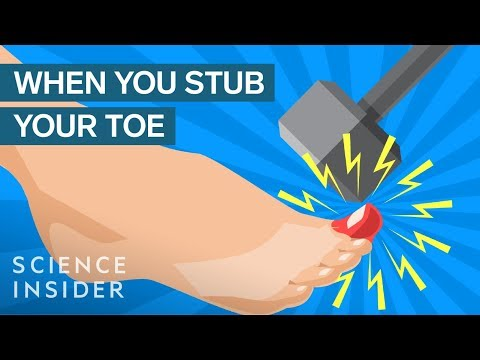 Why Stubbing Your Toe Hurts So Much