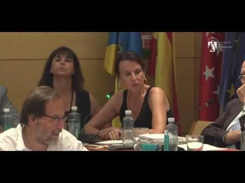 Gritos en Pleno Torrelodones. VxT niega una propuesta contra Viogen del PP