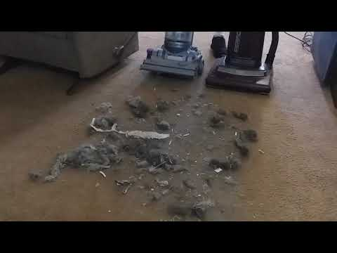 double header review dyson dc-14 animal vs sanyo (panasonic)  vacuum demo / review