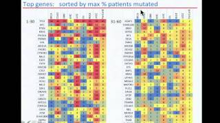 TCGA: Analysis of Somatic Mutations Across Many Tumor Types - Petar Stojanov