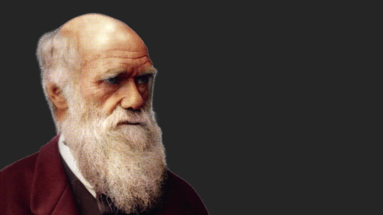 great men deserve great style charles darwin youtube