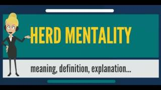 What is HERD MENTALITY? What does HERD MENTALITY mean? HERD MENTALITY meaning & explanation