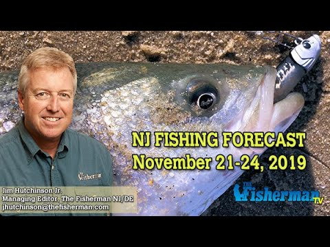 November 21, 2019 New Jersey/Delaware Bay Fishing Report With Jim Hutchinson, Jr.