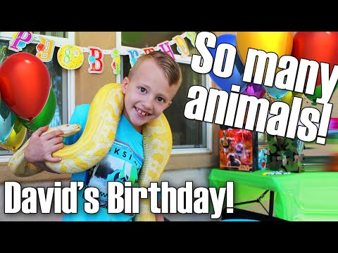 David's AWESOME AMAZING REPTILE Birthday Party