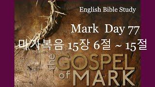 영어성경공부 마가복음 15장 6절~15절 Day77