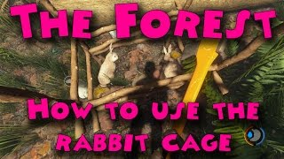 The Forest How to use the rabbit cage