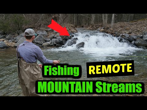 FISHING In REMOTE Mountain Streams (FLY FISHING)