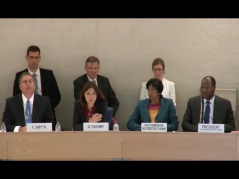 Panel discussion on the safety of journalists - 26th Regular Session of Human Rights Council