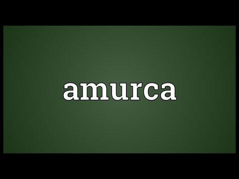 Header of amurca