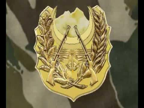 الرماية القوات البرية الجيش الوطني الشعبي الجزائري Youtube