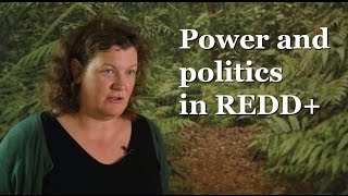 Maria Brockhaus on power and politics in REDD+