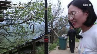 세계테마기행 - 신선의 땅, 인간의 마을, 중국 무릉도원 3부- 숨겨진 낙원을 찾아서 바사묘족 마을_#002
