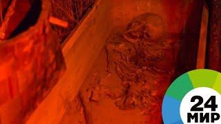 Мумии возвращаются: египетские археологи обнаружили древнее захоронение - МИР 24