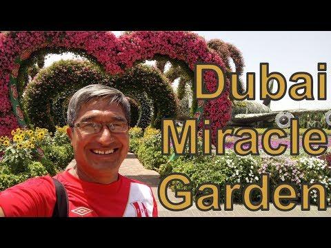 Dubai Miracle Garden - Hermoso Parque De Flores En Dubai. Propuesta Para PARQUE DE FLORES En Junín