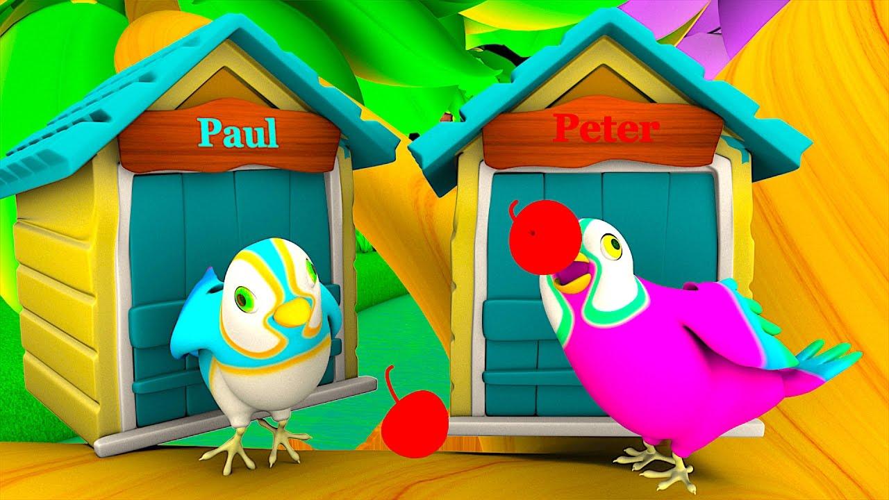 two little dicky birds kindergarten nursery rhymes u0026 songs for