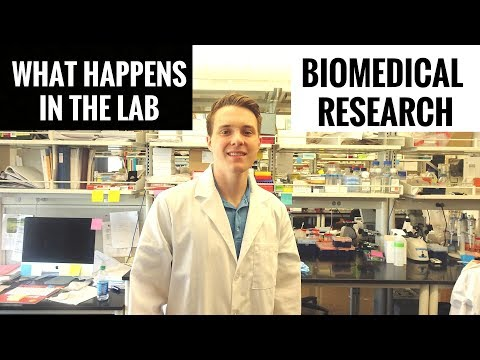 Day In The Life Of A Biomedical Research Scientist