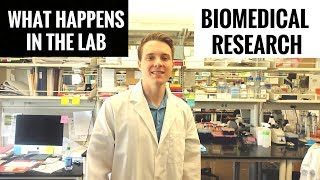 day-in-the-life-of-a-biomedical-research-scientist