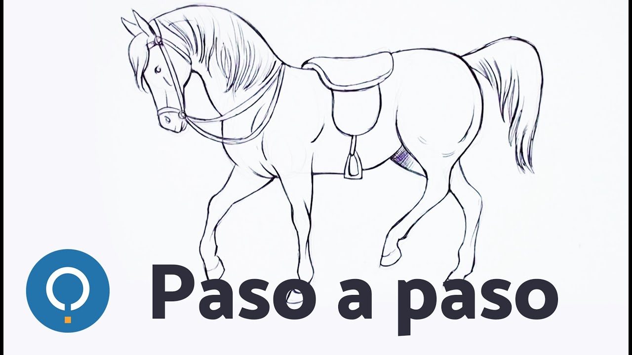 Como Dibujar Un Caballo Paso A Paso Aprende A Dibujar Youtube