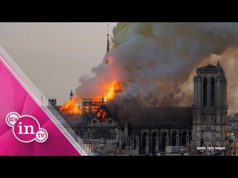 Großbrand in Notre-Dame: Diese Stars trauern auf Social Media