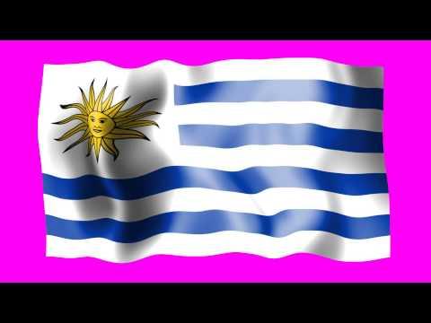 Uruguay Waving FlagFree Footage