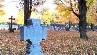 Cloistered Cemetery by Midnight Syndicate