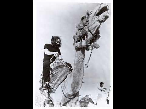 Dead Camel Blues Band & The Mushroom Riders - Mitch Bjukenen