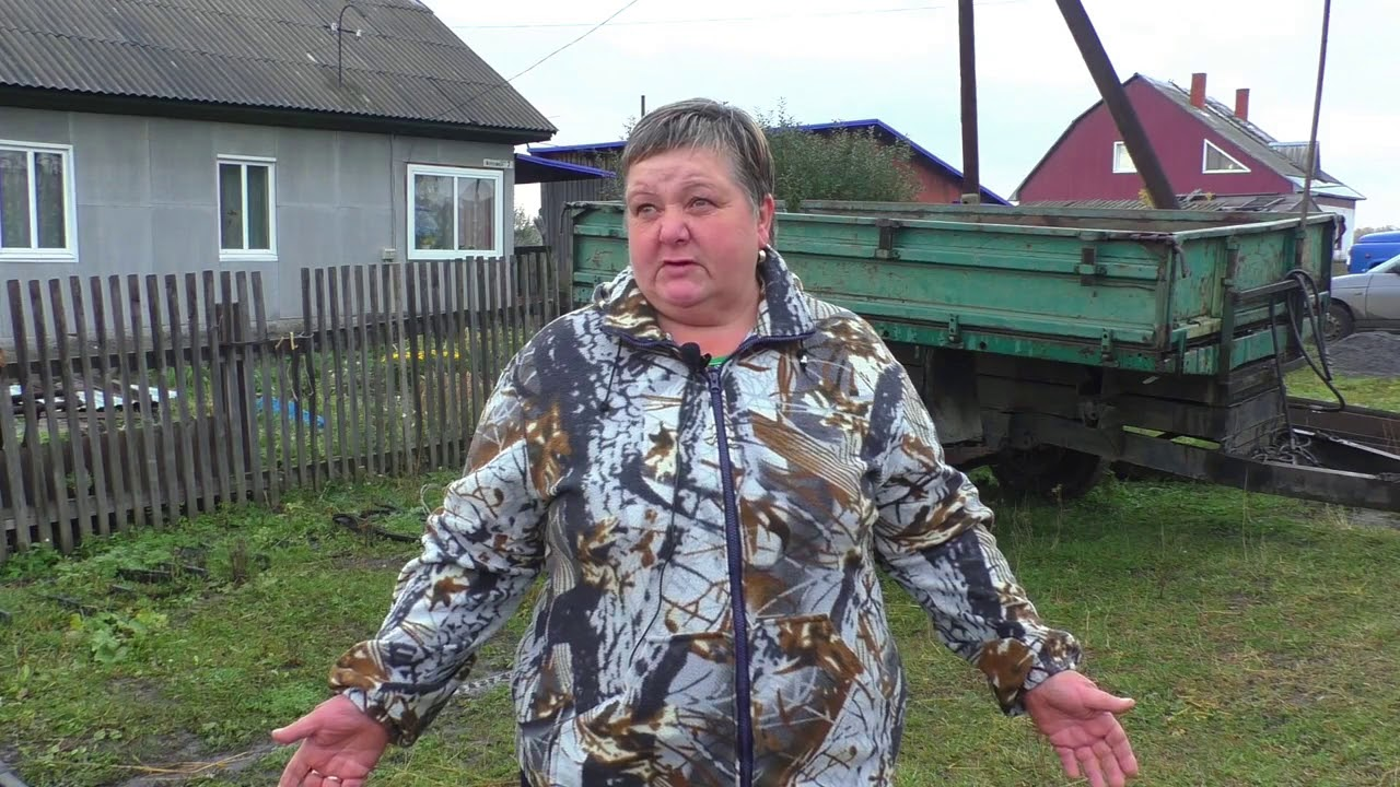 Впервые в Кузбассе. В Березовском пройдут Всероссийские конные .