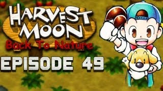 Golden Lumber? | Harvest Moon | Back to Nature EP.49