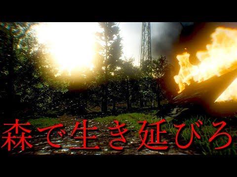 森で天使とガチ鬼ごっこするホラーゲームが最恐に怖かった