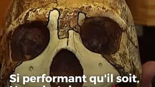Pourquoi Neandertal a-t-il disparu et pas nous?