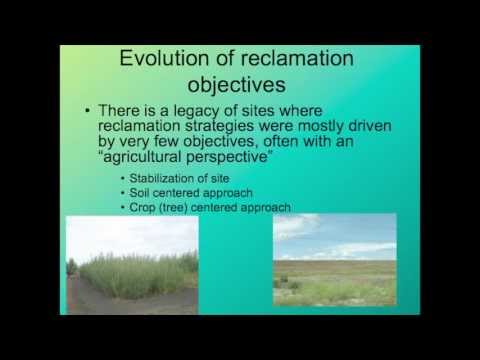 The Role of Aspen as a Keystone Species in Forest Land Reclamation: Part 1