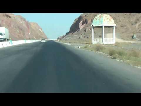 Cows crossing Highway Samarkand Самарқанд Road Trip in Uzbekistan #Highways #Uzbekistan