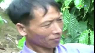 [Thời Sự] Chung Tay Vì Người Nghèo - Thời Sự Lâm Đồng - LDTV