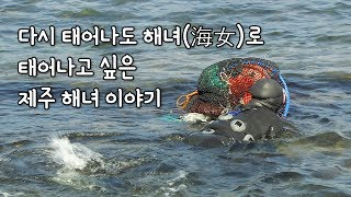 거친 바다와 맞서는 제주 해녀 이야기 [섬섬썸]