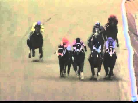 Race Replays   Aquaduct