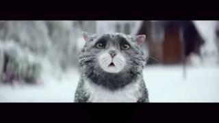 Mog's Christmas Calamity! Рождественская история, русская озвучка(, 2016-11-27T12:26:50.000Z)