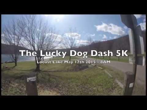 Lucky Dog Dash Course