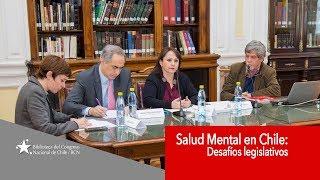 Parlamentarios y expertos analizaron los desafíos legislativos sobre salud mental