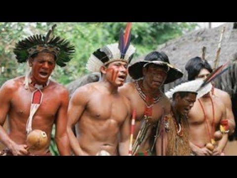 """Xem thổ dân châu Phi vỗ béo bằng """"MÁU VÀ SỮA BÒ"""""""
