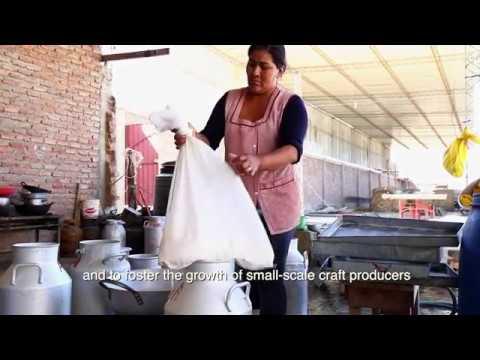 Oikocredit video Cidre Bolivia