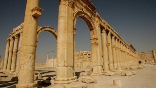 تدمر بين داعش والأسد.. تحالف النفط والآثار والمواقف